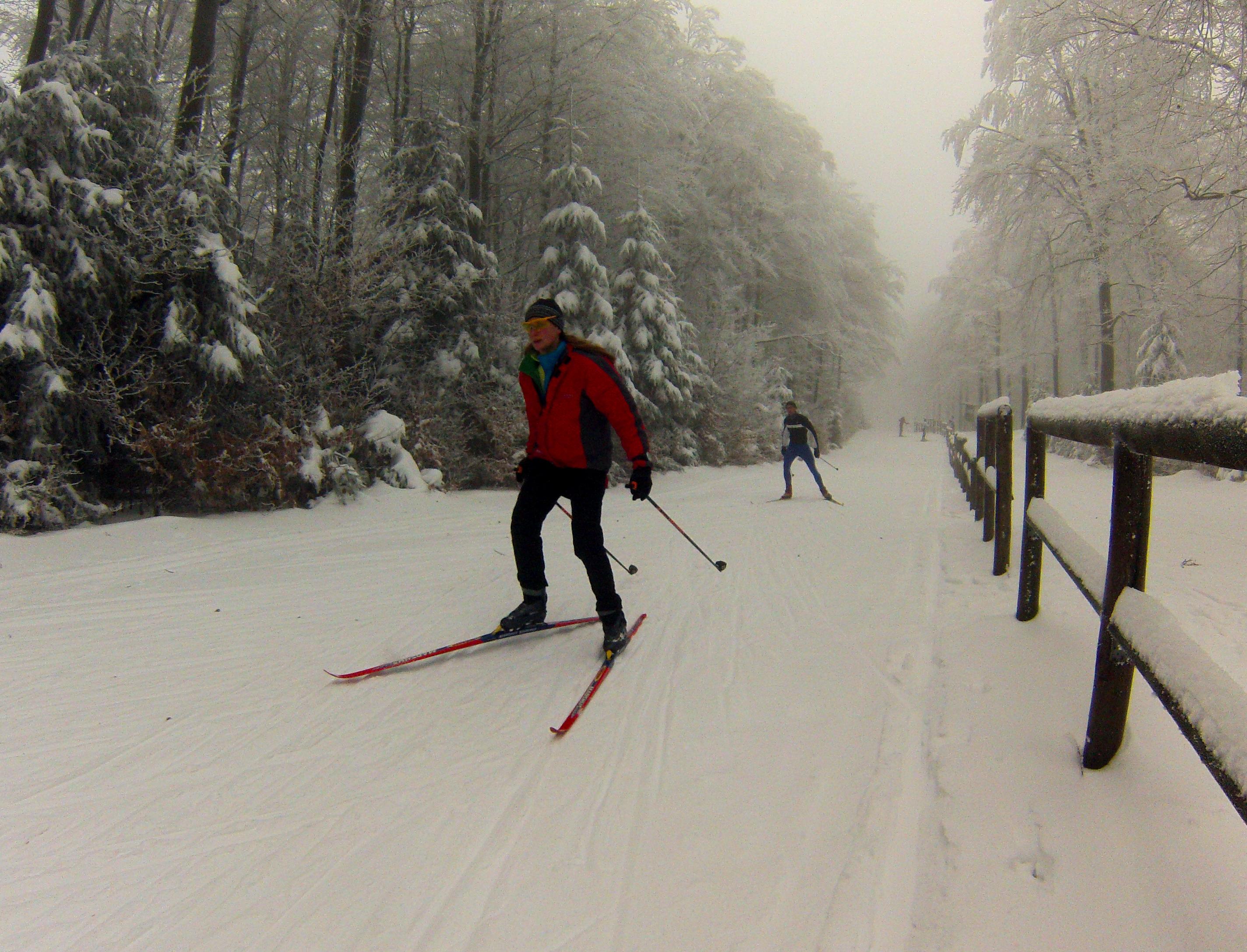 Skilanglauf auf der Taufsteinloipe